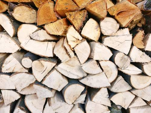 A pile of firewood.