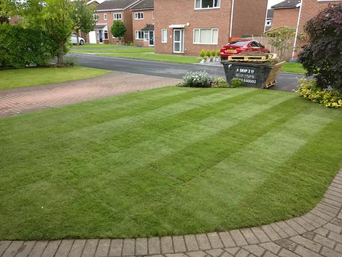 A nicely turfed front lawn